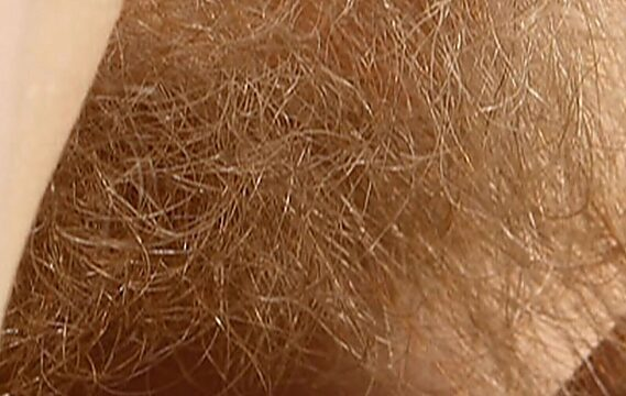 hairy blonde pussy